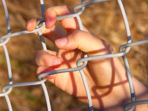 Hang On!: My daughter's hand on a chain link fence at sunset