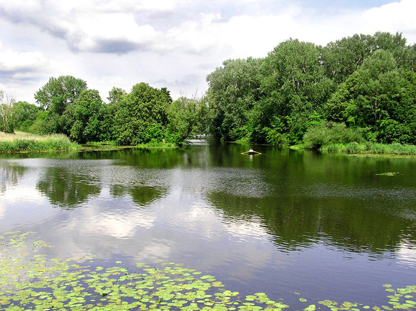 Lake in a park: This is one of Warsaw's park, Wilanow.