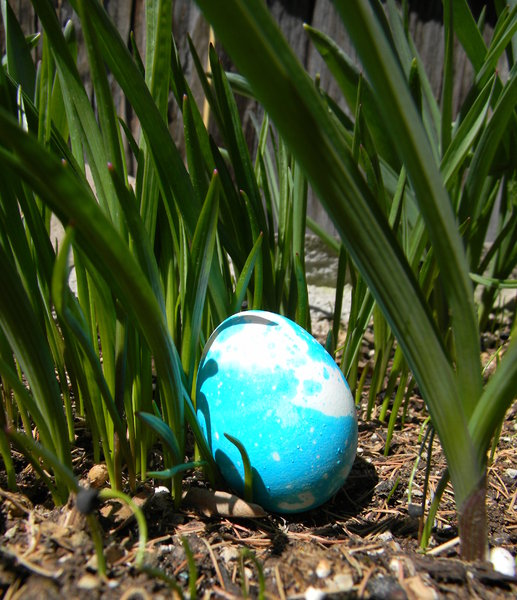 Easter Eggs: Our Easter eggs in the grass.