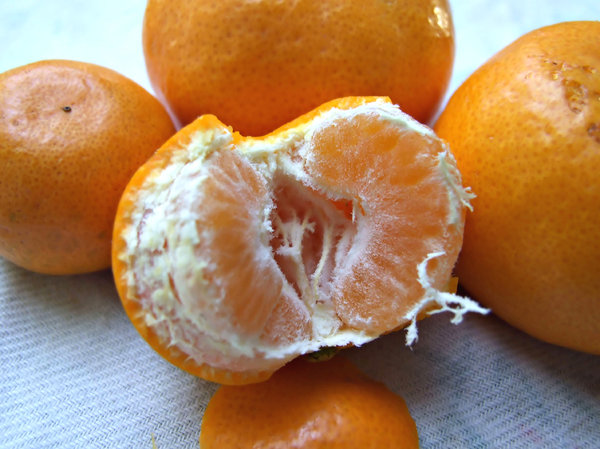 mandarins: several mandarins, one peeled and halved - open