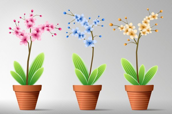 Flowers in Pot 6: Colorful flowers in a pot on the gray-white or blue-white background