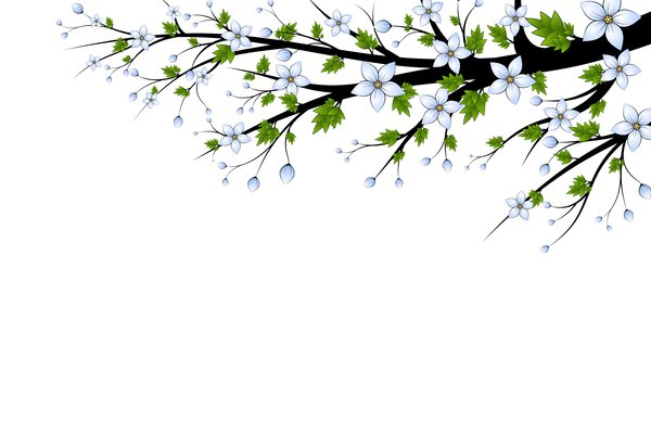 Blue Flowers Branch: Branch with blue flowers on a white background