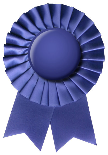 Blue Ribbon: A ribbon with a blue button.