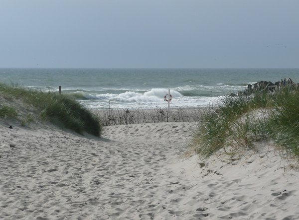Way to the Beach: Way through the dunes