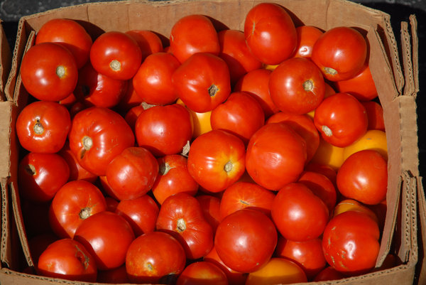 Tomatoes: Tomatoes in a box.
