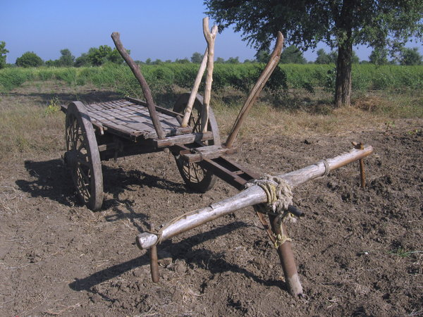 Cart 1: A cart awaiting harness to a pair of oxen at Village Sevasi in Gujarat, India.