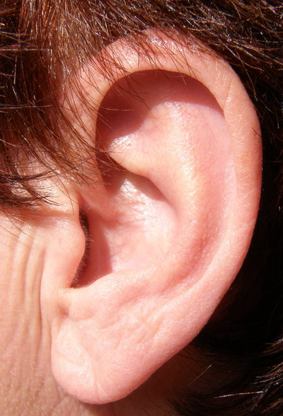 ear: No description