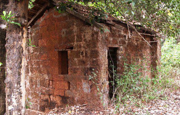 poor man house: a house with just one room into the forest in goa