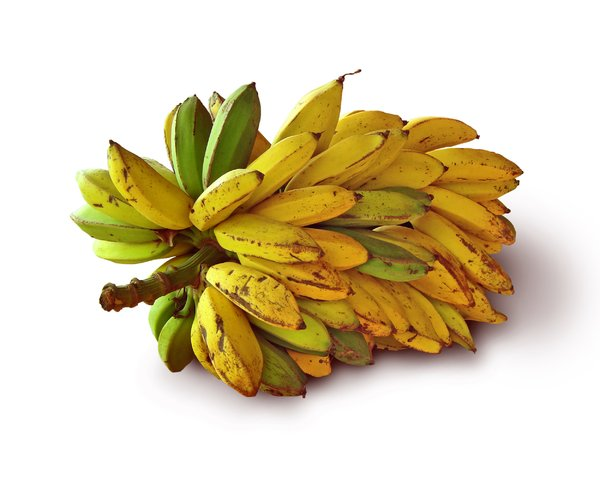 Going Bananas in Brazil: Bunch of bananas in green and yellow