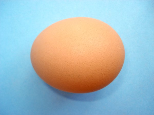 Chicken Eggs 5: Chicken Eggs