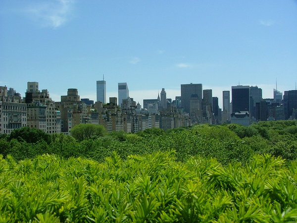 NYC Skyline: New York City skyline from the roof of the Metropolitan Museum of Art