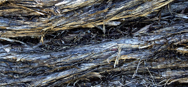 Dirty Wood Chips ~ Free stock photos rgbstock images barking