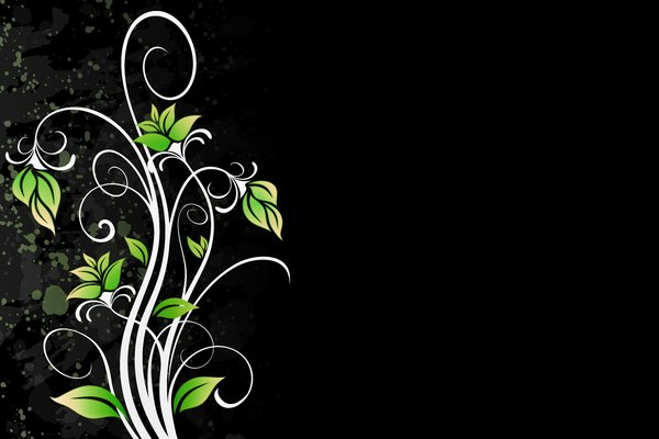 Yet Another Floral 7: Colorful floral elements on a white or black background. Which do you like most? ;)