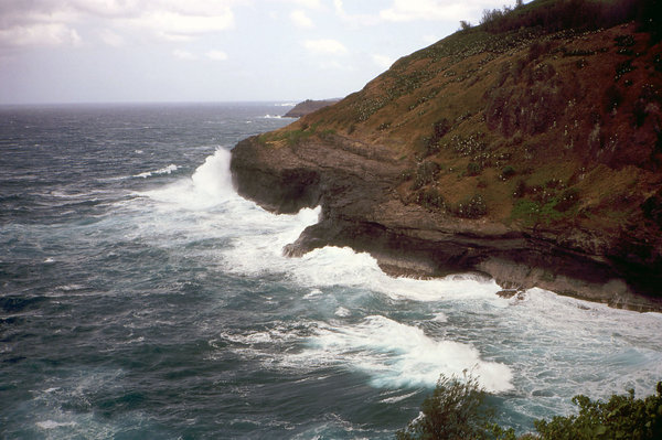 Pacific Ocean: The Pacific Oceas in Hawaii.