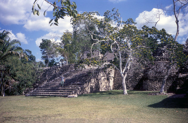 Mayan Ruins: Mayan ruins at Kohunlich in Mexico.