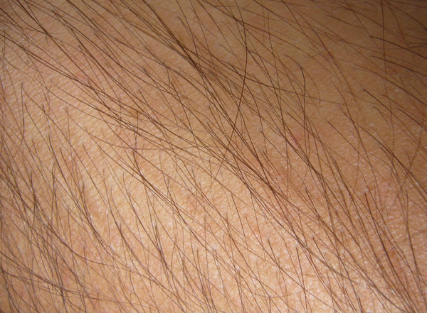 Hairy Skin Texture: My arm