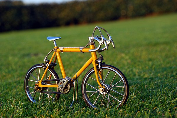 Bicycle on the grass 1: Bicycle on the grass
