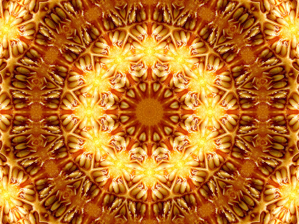 melon seed mandala: abstract backgrounds, textures, patterns, kaleidoscopic patterns, circles, shapes and  perspectives from altering and manipulating images