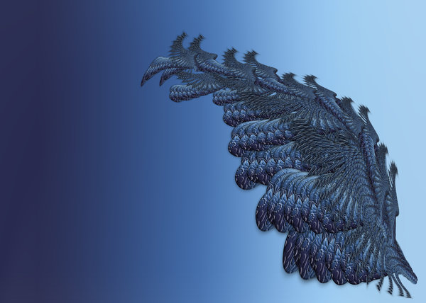 butterfly: made in photoshop, not real fractals