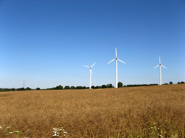 Windmills: Windmills in Danish landscape
