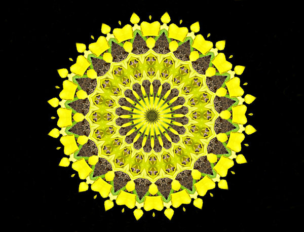 yellow heart flame wheel: abstract backgrounds, textures, patterns, geometric patterns, kaleidoscopic patterns, circles, shapes and  perspectives from altering and manipulating image
