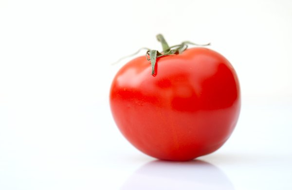 Solo tomato: single tomato on white background