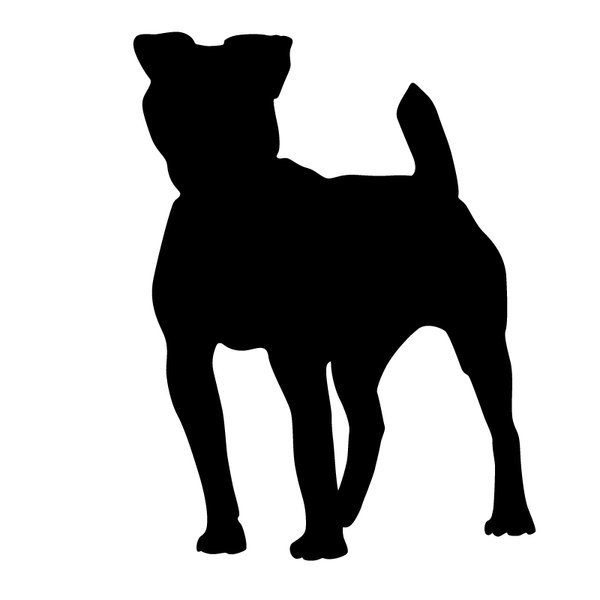 silhouette dog: Adobe Illustrator CS5
