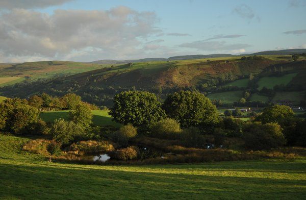Early morning in Wales: 7.30am and the sun is shining in near Foel, Powys, Wales!