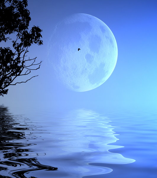 Giant Moon Over Water: A giant moon in the evening sky, reflected in calm water. Sillouhette of tree branches and bird. You may prefer:  http://www.rgbstock.com/photo/2dyW3qT/Blue+Planet  or:  http://www.rgbstock.com/photo/dKToB8/Romantic+Moon
