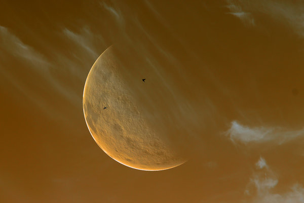 Giant Moon Sepia: A giant moon in the evening sky with clouds and birds. Sepia tones.