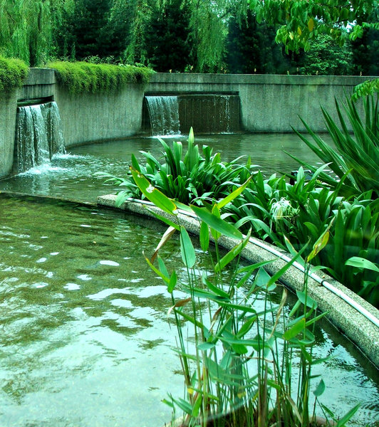 water feature: large garden water feature - ponds