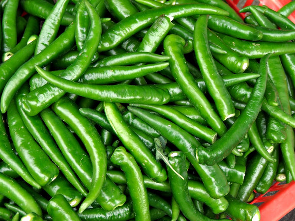 hot green chillies: a heap of hot green chillies ready for processing