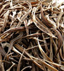 dried pipefish for sale