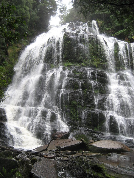Waterfall: Waterfall in Tasmanie.