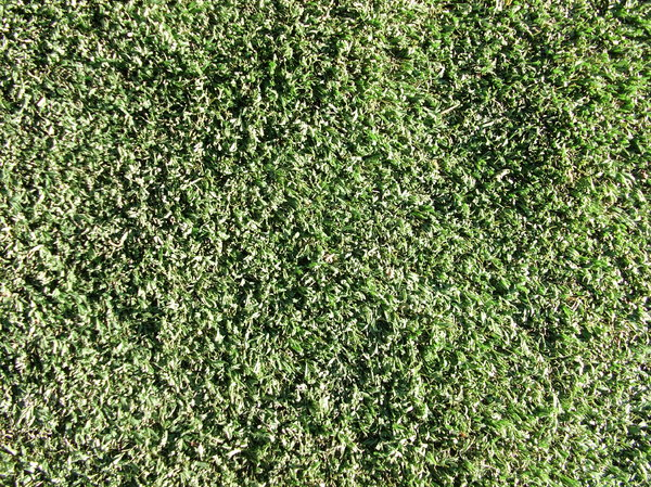 Artificial Grass: No description