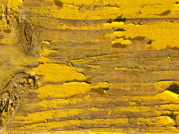 Yellow wooden texture: Old painted wood texture.