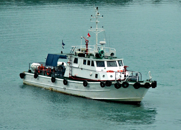 harbour support vessel: small harbour support vessel and fireboat