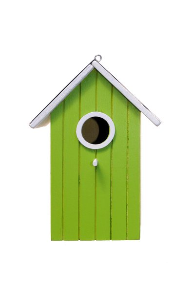 bird house: colored fancy bird house.