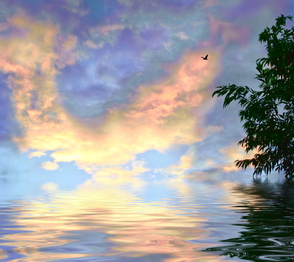 Rainbow Skies over Water 1: Rainbow coloured clouds reflected in water, with a bird flying, and a tree to border. Would make a great background or illustration. Large file size.