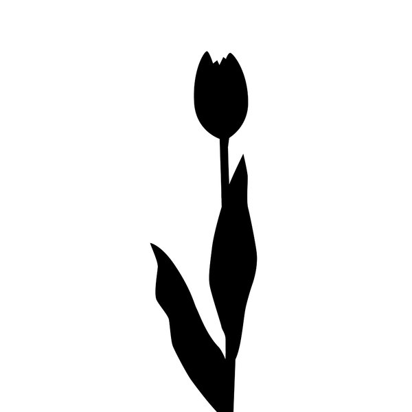 silhouette tulip: isolated on white background