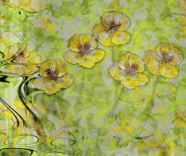 Nasturtium Abstract 2: An abstract, arty image of nasturtiums in yellow and green colours.