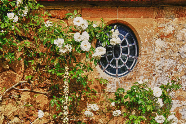 Oval window: Oval window with white roses.