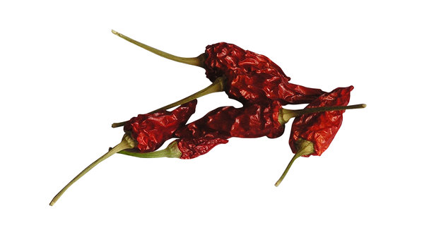 Chilli peppers: A dried chilli peppers.