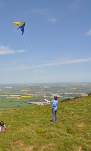 Flying a kite: First go at flying a kite.