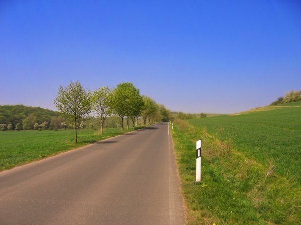 country highway in spring: country highway in spring