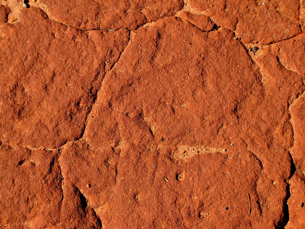 red pindan soil: red Australian pindan soil