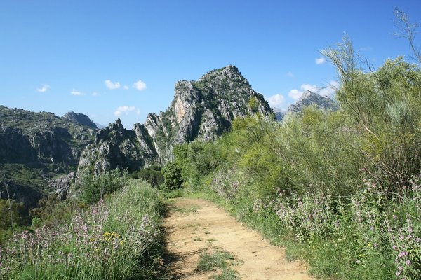 Mountain path: A mountain path in Andalucia, Spain.