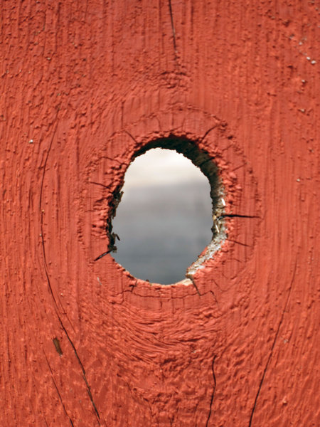 Knot Hole: A know hole in a fence.
