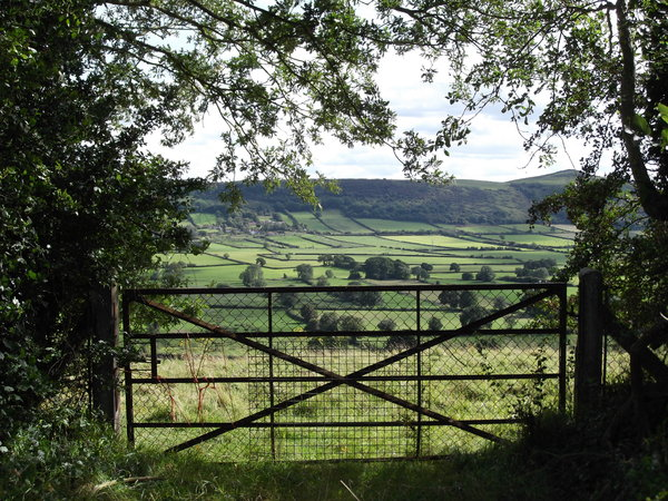 Gateway to the country: View towards Crook Peak in Somerset