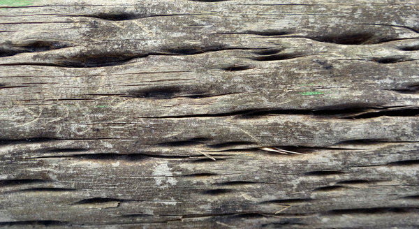 Wooden Post Texture free stock photos - rgbstock - free stock images | aged & cracked